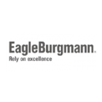 eagleburgmann_trojanhorse_strategic _advertising_agency_pune