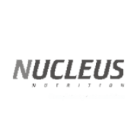 nucleus_trojanhorse_strategic _advertising_agency_pune